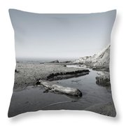 Point Arena Beach California Throw Pillow