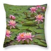 Pond Decor Throw Pillow