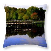 Pond Refletions Throw Pillow