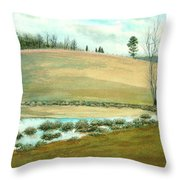 Pond Spiders Throw Pillow