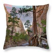 Ponderosa Pines In Slot Canyon Throw Pillow