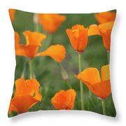 Poppies In The Breeze Throw Pillow