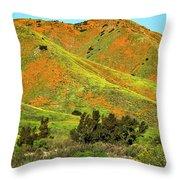 Poppy Hills And Gullies Throw Pillow