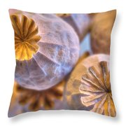 Poppy Seed Pods 2 Throw Pillow
