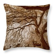 Portrait Of A Tree In Infrared Throw Pillow