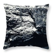 Post Falls Park In Snow  Throw Pillow