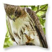 Predator With Prey Throw Pillow