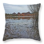 Prescott Arizona Watson Lake Sky Clouds Hills Rocks Trees Grasses Water 3142019 4920 Throw Pillow