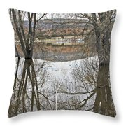Prescott Arizona Watson Lake Trees Reflections Hill Rocks 3142019 4921 Throw Pillow
