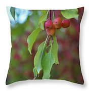 Pretty Cherries Hanging From Tree Throw Pillow