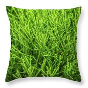 Pretty Green Throw Pillow by Nick Bywater