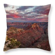Pretty In Pink Throw Pillow by Rick Furmanek