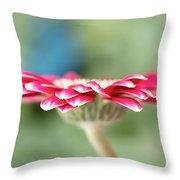 Pretty Petals Throw Pillow