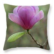 Pretty Soulange Magnolia Throw Pillow