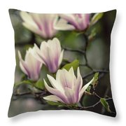 Pretty White And Pink Magnolia Throw Pillow
