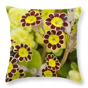 Primula Gold Lace Throw Pillow