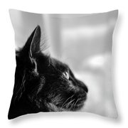 Profile Of A Long Haired Cat In Window Throw Pillow