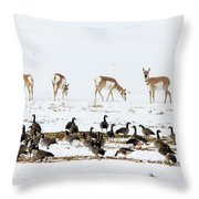 Pronghorn Antelope And Geese Throw Pillow