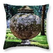 Proportions Throw Pillow