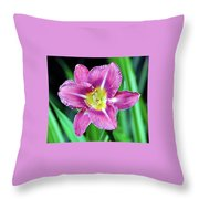 Purple And Yellow Flower Throw Pillow