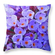 Purple Flowers In The Morning Dew Throw Pillow