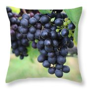 Purple Grape Bunches 20 Throw Pillow