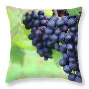 Purple Grape Bunches 21 Throw Pillow
