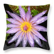 Purple Lotus Water Lily Throw Pillow