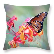 Queen Butterfly On Mexican Bird Of Paradise  Throw Pillow