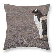 Quick Hurry - Gentoo Penguin By Alan M Hunt Throw Pillow