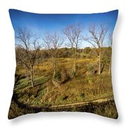 Raceway Woods Throw Pillow
