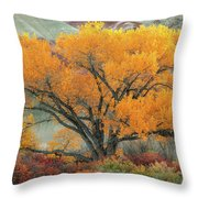 Radiant  Throw Pillow by Dustin LeFevre
