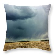 Rain Down On Parched Fields  Throw Pillow