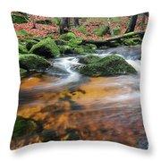 Rapids On Jedlova Brook, Jizera Mountains,  Czech Republic Throw Pillow