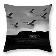 Recycled Time Throw Pillow