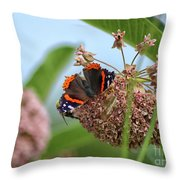 Red Admiral Butterfly On Milkweed Throw Pillow