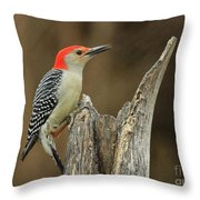 Red-belly At Stump Throw Pillow