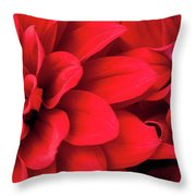 Red Dahlias Throw Pillow by Mark Shoolery