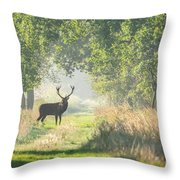 Red Deer In The Forest Throw Pillow