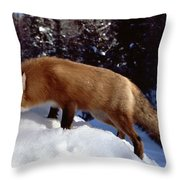 Red Fox Ontario Canada Throw Pillow by Rick Veldman