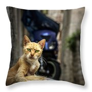Red Cat With Green Eyes Throw Pillow