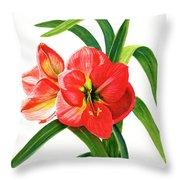 Red Orange Amaryllis Square Design Throw Pillow