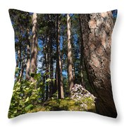 Red Pine Itasca Throw Pillow
