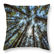 Red Pines 1 Throw Pillow