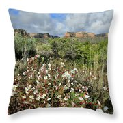 Red Point Desert Roses Throw Pillow by Ray Mathis