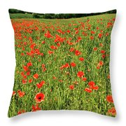Red Poppies Meadow Throw Pillow