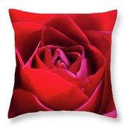 Red Rose 3 Throw Pillow