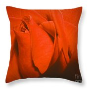 Red Rose Special Throw Pillow