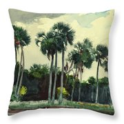 Red Shrt, Homosassa, Florida Throw Pillow