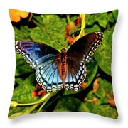 Red-spotted Purple Butterfly 017 Throw Pillow